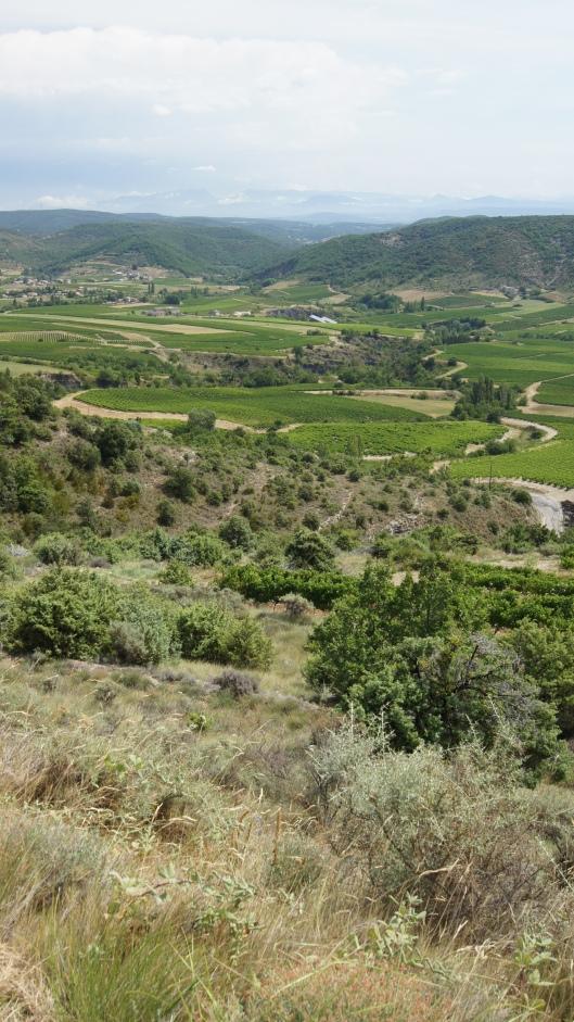 Vue vallée au alentour de Valvignères - 2012
