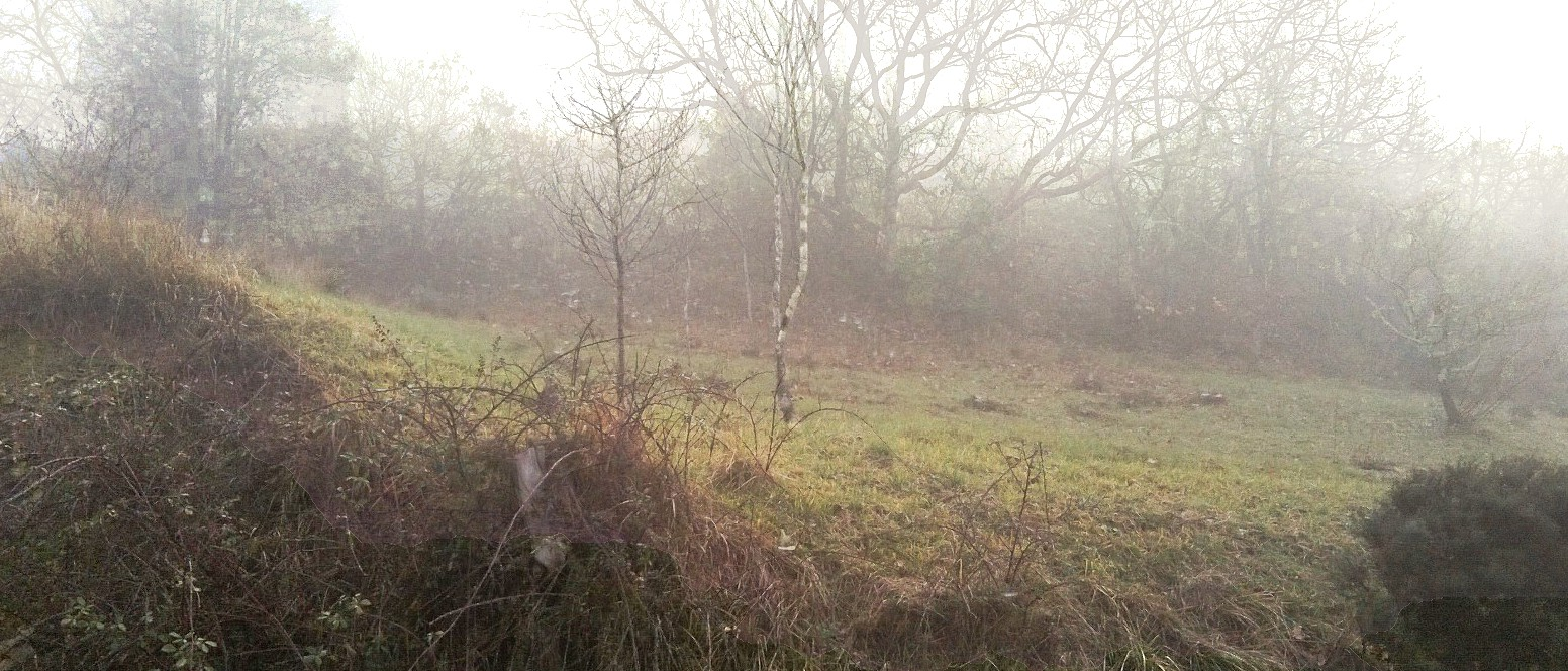 Matinée brouillard 29 janv 2016_A4
