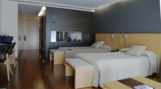 Chambre 224 - Andorre Park hotel