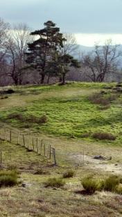 Campagne du centre Ardèche (aux alentours de Gluiras)
